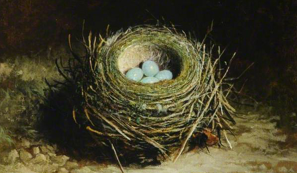 a-nest-with-four-eggs-by-abel-hold2
